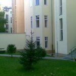 Prenajaté: Prenájom kancelárskych priestorov, Grösslingová 51, Bratislava-8