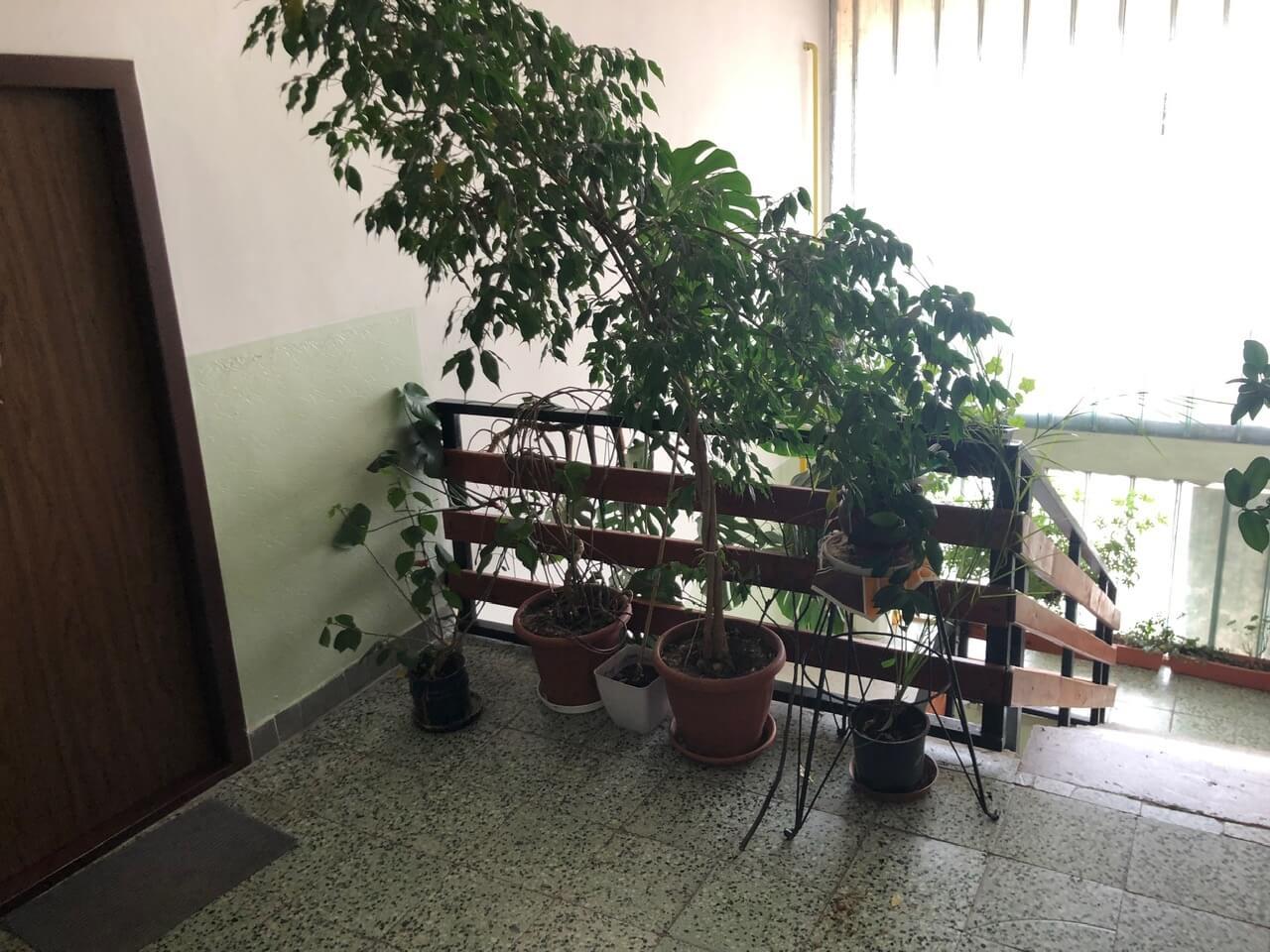 Exkluzívne na predaj 3 izb. byt, 81,7m2, balkón 5 m2, pivnica 6m2, garáž, Dunajská Lužná, ulica Brezová-41