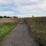 Pozemok pre výstavbu RD, Čunovo, Dolné kostolné polia, 1000m2-4