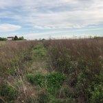 Pozemok pre výstavbu RD, Čunovo, Dolné kostolné polia, 1000m2-5