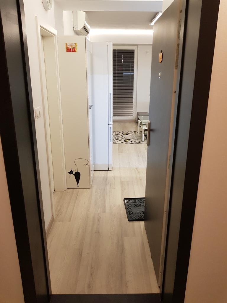 Prenájom 2 izb. byt, Dornyk, Ružinov-Trnávka, 34,51m2, Pri Avione-64