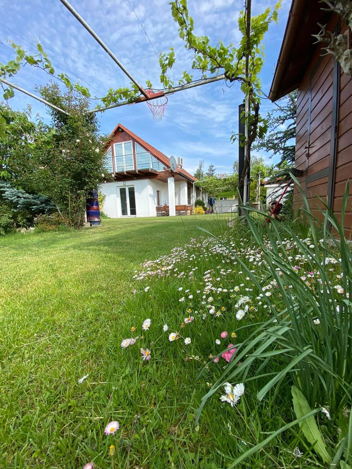 Predané: Predaj Rodinný dom v Šoporni, v tichej lokalite, pozemok 674m2, úžitková plocha 181m2,záhrada, kôlňa-2