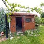 Predané: Predaj Rodinný dom v Šoporni, v tichej lokalite, pozemok 674m2, úžitková plocha 181m2,záhrada, kôlňa-15